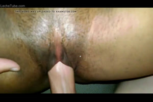 Pov amateur sex white cock penetrating